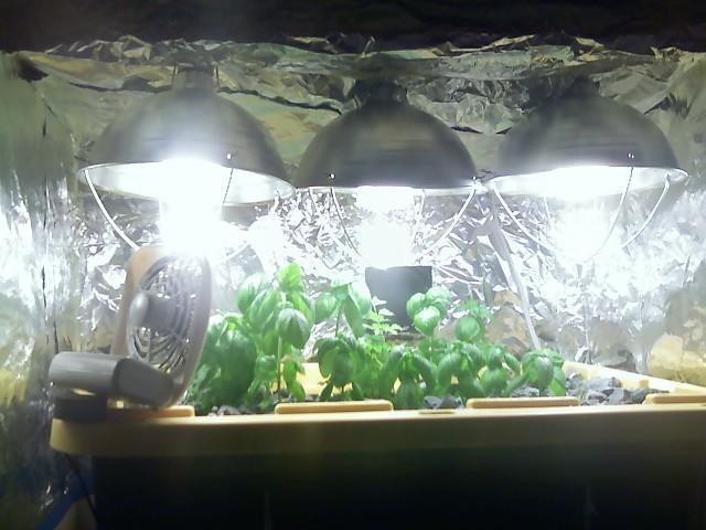 Hydroponic Lights