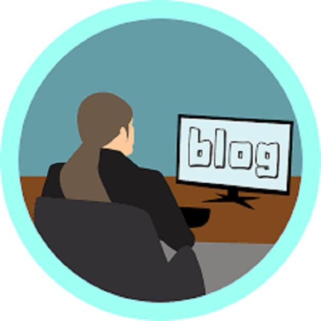 Professional Blogger