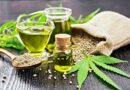 CBD and Hemp Oil for Pets