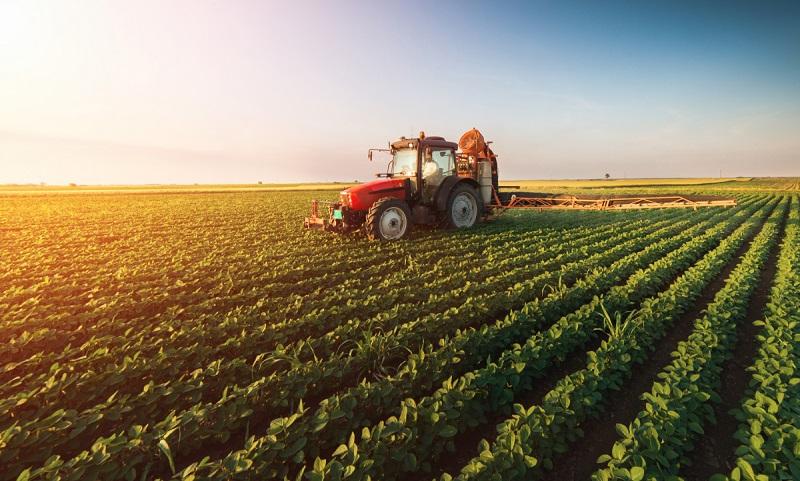 Croatia Agriculture Market