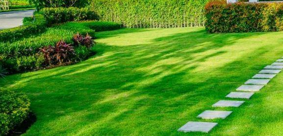 Beaverton Lawn Maintenance Company