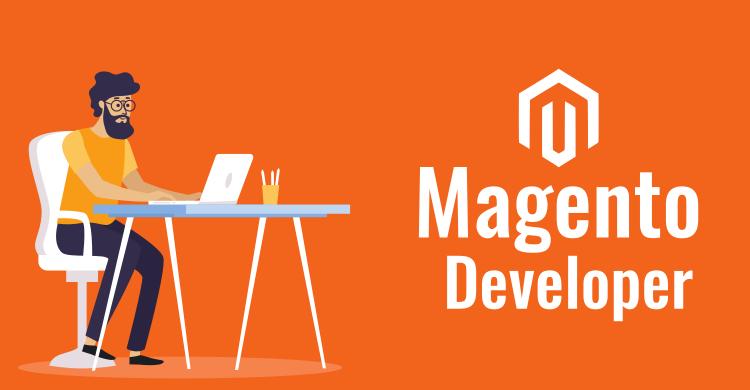 Magneto Developers