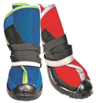 Summer Dog shoes