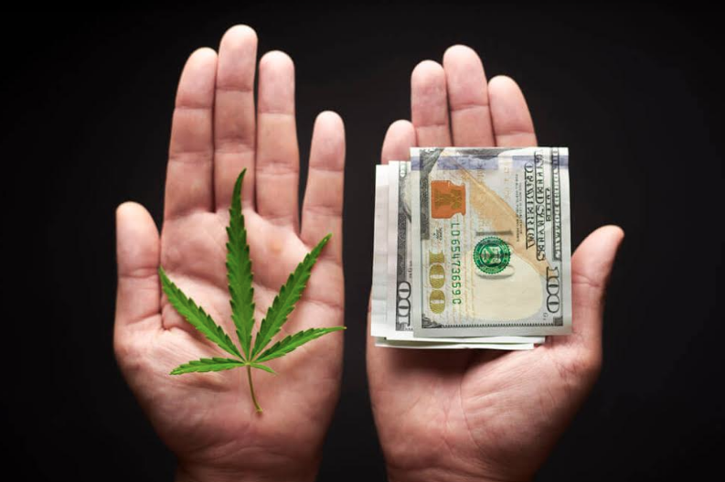 Why Cannabis Invest