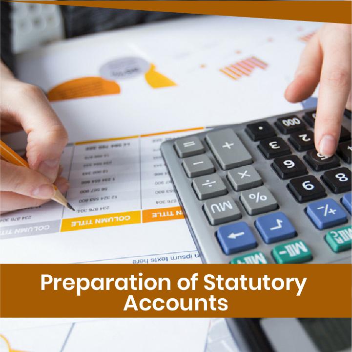 statutory account
