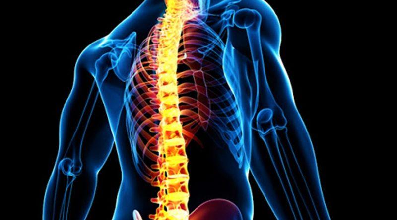orthopaedic spine implants