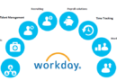 Why choose Workday HCM for the best HCM solutions?
