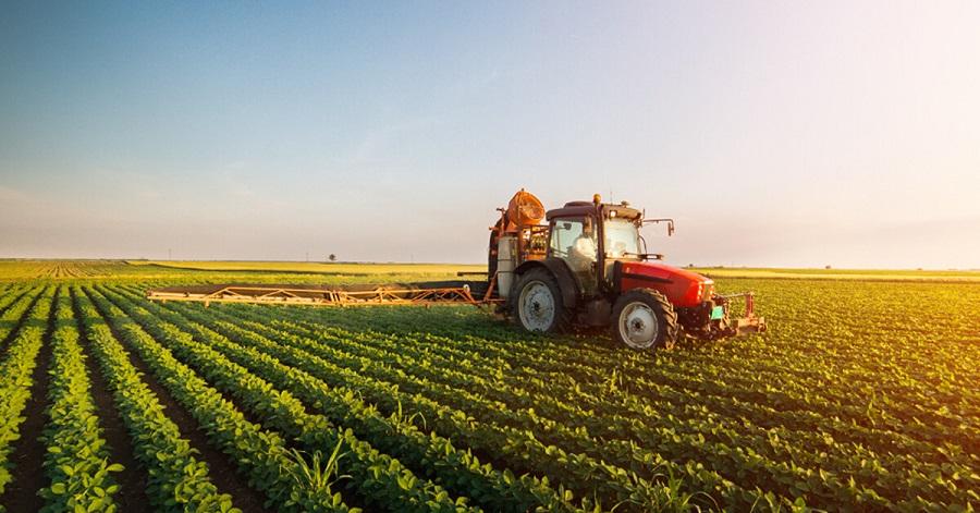Zimbabwe Agriculture Market
