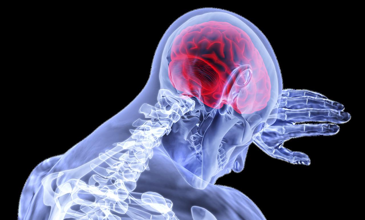 medical neuropsychology