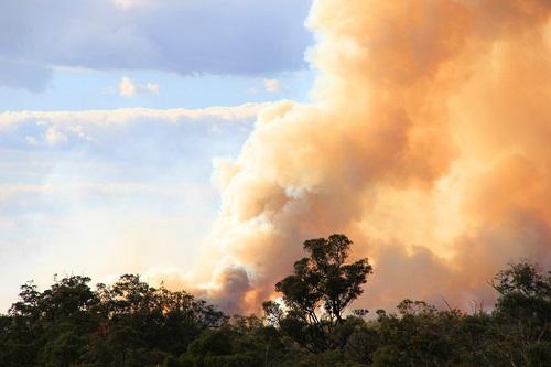 bushfire causes smoke in eyes