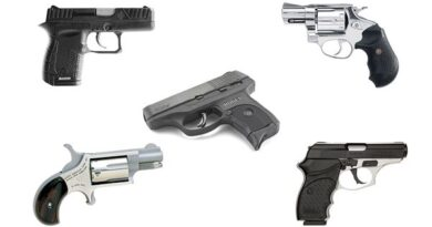 Top 10 Budget-Friendly Firearms for Beginners – Buying Guides and Reviews