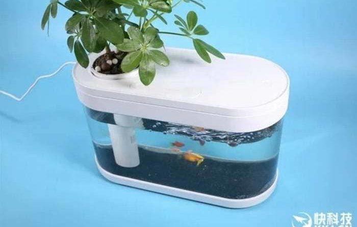 "Xiaomi's ""smart"" fishbowl"