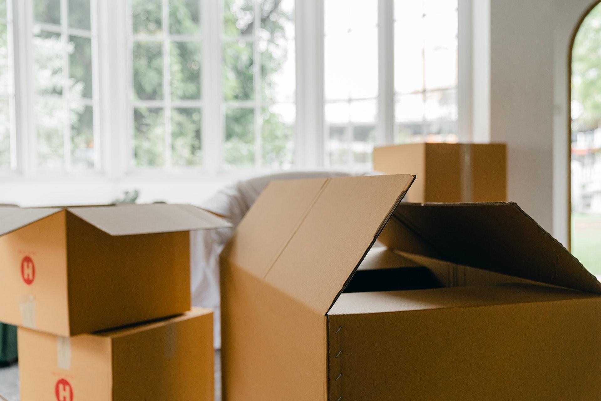 5 Reasons to Move Your Family to Arizona
